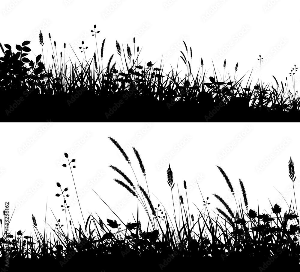 Fototapety, obrazy: Grassy foregrounds