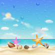 sea shell and starfish on a sand beach with water drop on screen