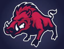 Angry Of Wild Hog Mascot
