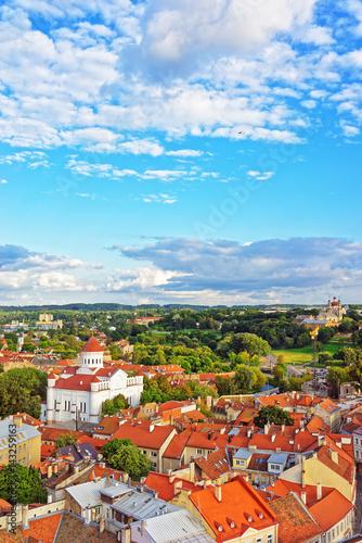 Fototapeta Rooftop of Cathedral of Theotokos in Vilnius obraz na płótnie