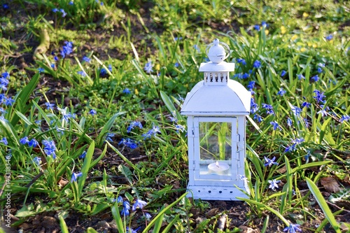 Grusskarte Laterne Im Garten Gartendekoration Im Fruhling Buy