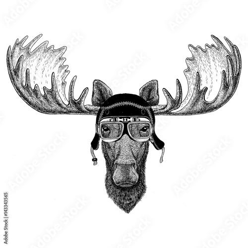 Vintage images of elk or moose for t-shirt design for motorcycle, bike, motorbik Canvas Print