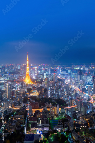 Foto op Aluminium Tokyo Cityscape view over Tokyo tower and Tokyo city view from Roppongi Hills at night,Roppongi Hills is a famous view to see Tokyo tower in Tokyo,Japan