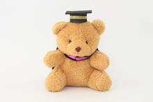 Brown Bear Wearing A Graduation Cap On A White Background.