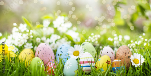 beautiful easter banner Wallpaper Mural