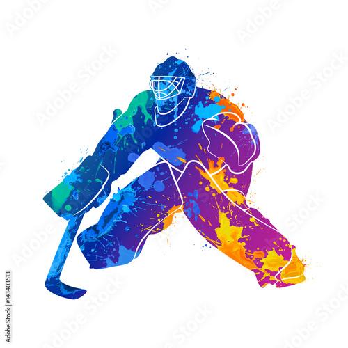 Photo  player hockey goalie