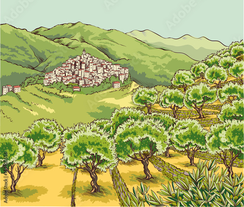 View of an olive grove in the hinterland of Liguria with village perched on the hill Wallpaper Mural