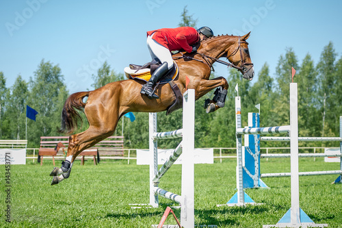 Fotografía The rider on the red show jumper horse overcome high obstacles in the arena for