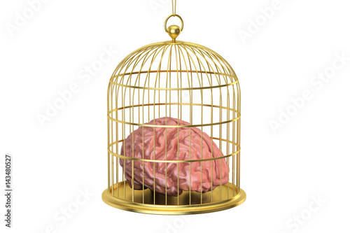 Fotografia  Birdcage with a brain inside, 3D rendering