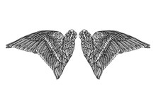 Wings. Set Of Black White Bird And Angel Wings In Open Position Isolated Vector Illustration.