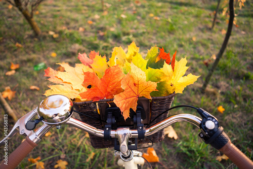 Stickers pour porte Velo Close up perspective view of bicycle braided basket with orange, yellow and green leaves bouquet, fall background