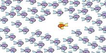 Swim Against The Tide - One Fi...