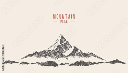 Fototapeta Vector mountain peak pine forest hand drawn obraz