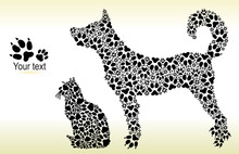 Silhouettes Of Cat And Dog From Tracks