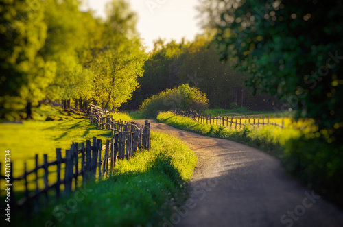 Rural Sweden summer landscape with road, green trees and wooden fence. Adventure scandinavian hipster eco concept © Roxana