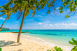 Beautiful tropical Maldives island, white sandy beach and sea with palms tree around .