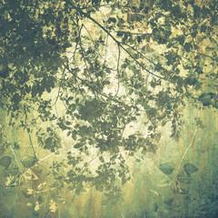 Panel Szklany Liście Vintage Treetop