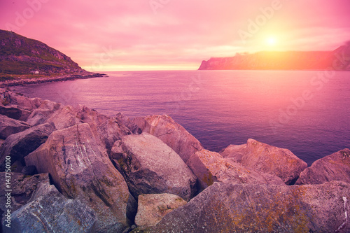 Fjord, rocky beach at pink rose sunset, nature Norway. Senja island. Beautiful bay.