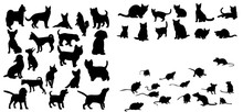 Illustration, Vector, Silhouette Of Cats Dog And Mouse Set