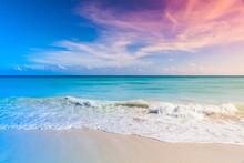 Tropical Beach Background, Saona Island