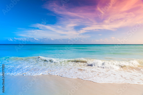 Poster de jardin Caraibes Tropical beach background, Saona island