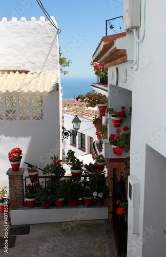 Fototapety, obrazy: Spain. Andalucia. Mijas. Street with white walls of house and flowers, vertical view.