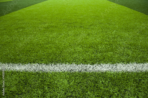 Fotografie, Obraz  Artificial Football or Soccer Pitch