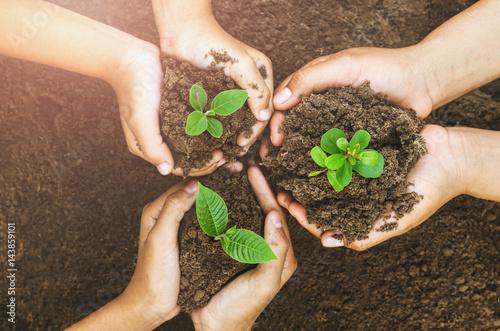 Poster Vegetal Growing concept eco Group hand children planting together on soil background