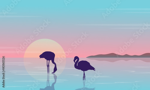 Collection stock flamingo silhouette beauty scenery