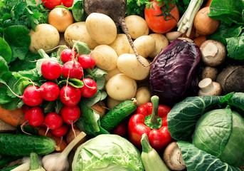 Colorful vegetables background. Set of fresh vegetables close up