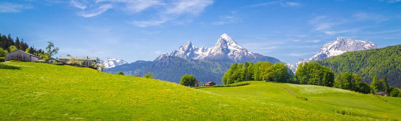 Idilični krajolik u Alpama s cvatućim livadama i seoskom kućom ljeti