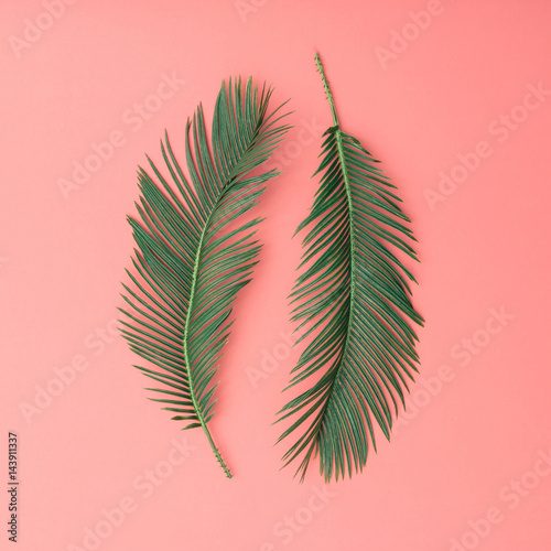 Tropical palm leaves on pink background. Minimal nature summer concept. Flat lay. Wall mural