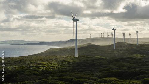 Fotografie, Obraz  Albany's windfarm