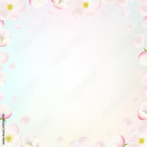 Border With Apple Tree Flowers © cammep