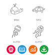 Turtle and jellyfish icons. Whale linear sign. Award medal, growth chart and opened book web icons. Download arrow. Vector