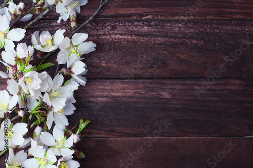 Branch with almond blossoms on a brown wooden surface Wallpaper Mural