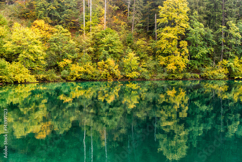 Italy, Trentino Alto Adige, Non valley, reflection of autumn trees Tovel Lake