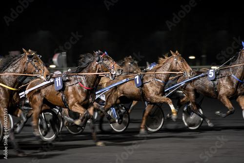 La pose en embrasure Equitation course de trot attelé en filé