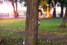 The Boy Hides Behind A Tree In The Park