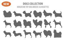 Miniature Toy Dog Breeds, Set Icon Isolated On White . Flat Style