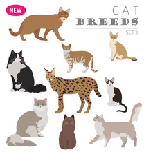 Cat Breeds Icon Set Flat Style...