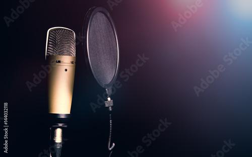 Fotografie, Obraz  Professional condenser microphone with pop filter
