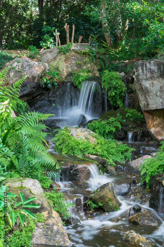 Fototapeten Wasserfalle The small waterfall runs and hitting rocks with plants and ferns in Brisbane Botanical Garden Mt Coot-tha, Australia