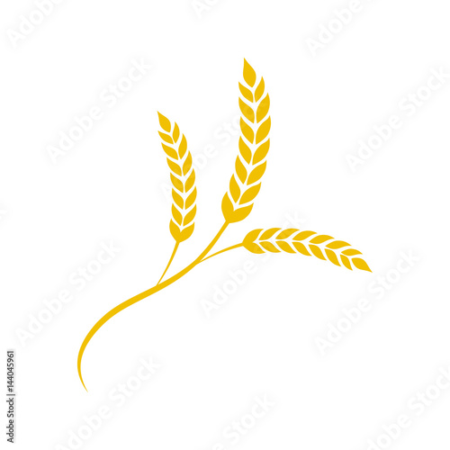 Photo Wheat spike in flat style. Agriculture wheat
