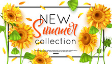 New Summer Collection With Sunflower For Banner. Vector Illustration.
