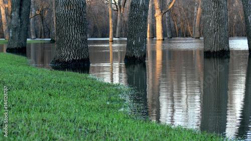Valokuva  River's Edge