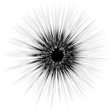 Streszczenie artystycznej ilustracji. Czarno-biały geometryczny element teksturowany. - 144143189