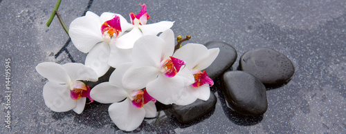 Naklejka na szybę Spa stones and white orchid on grey background.