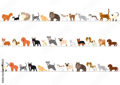 Stampa su Tela standing small dogs and cats border set