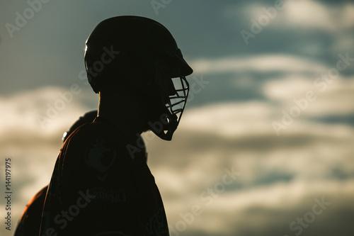 Fotografiet  Lacrosse themed photo